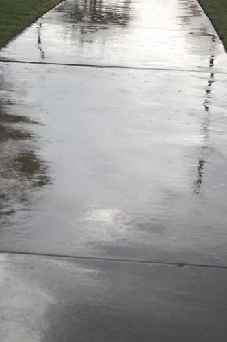 08.25.2011 Rain again