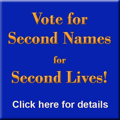Second Names for Second Lives!