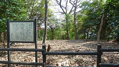 熊野神社市民の森(師岡貝塚)(Morooka Shell Mound at Kumano Shrine Community Woods)