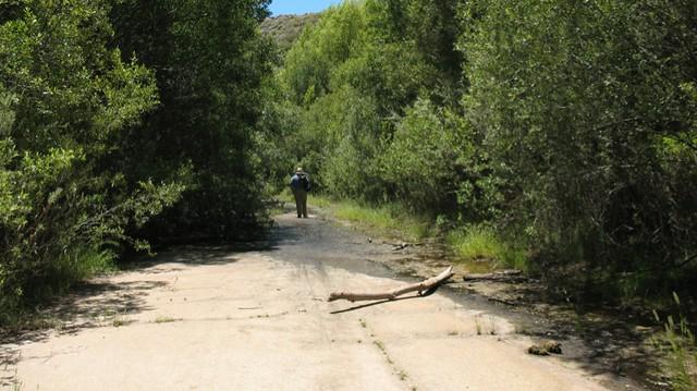 St. Francis dam site