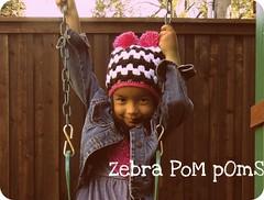 Zebra Chic - 1Pom Pom