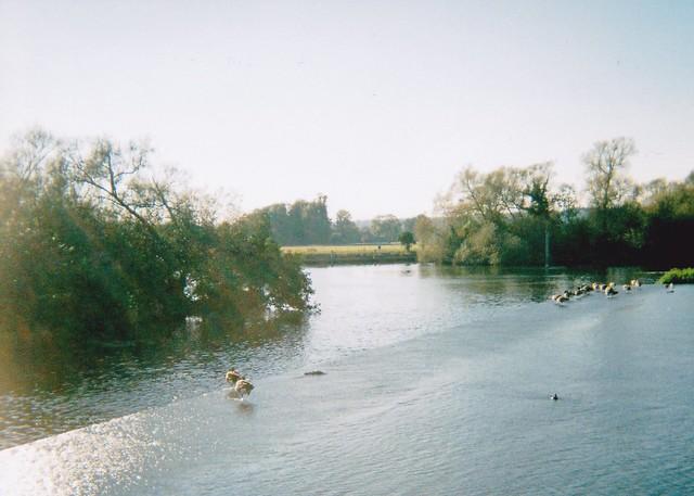 2011-10-02 Hambledon Lock 01