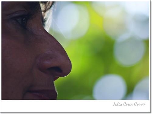 Por una nariz by Julio César Correa