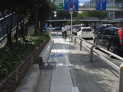040桜通り自転車