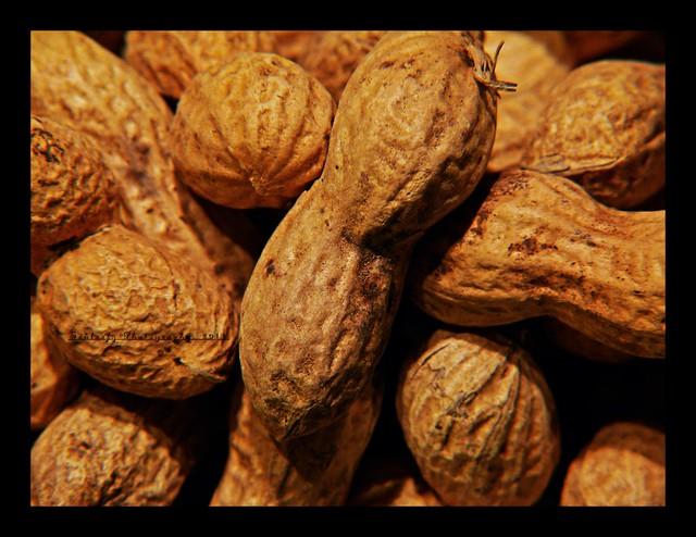 #319/365 Peanuts