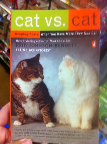 Typical Cat Book