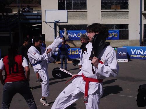 Clínica de Taekwondo