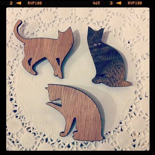 Cat poses (=^'o'^=)