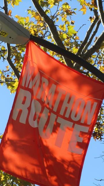 ingnycm2011. marathon route.