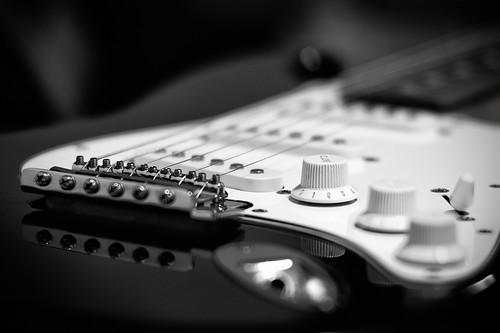 (300/365) Fender by albertopveiga