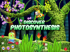 Bobo Photosynthesis