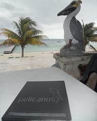 Puerto Morelos - Pelicanos restaurant (2)