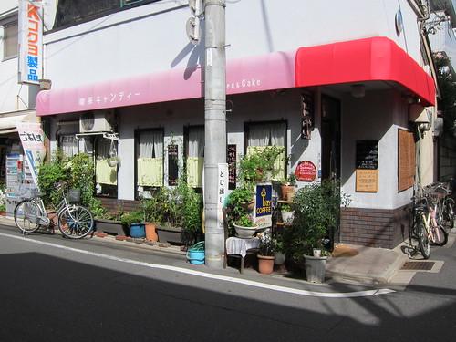 plants in front of restaurant