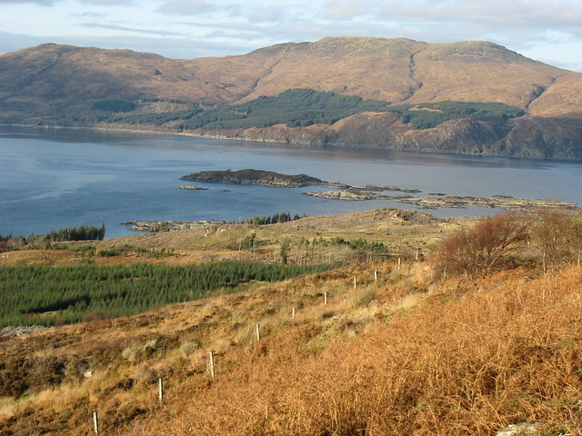 Sandaig Islands in the morning light