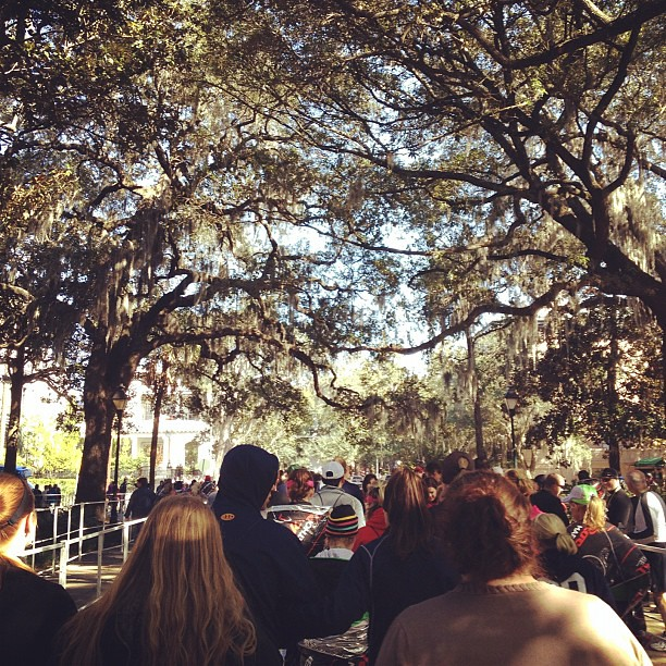Shuttle line in the park. Live oaks.
