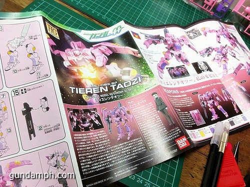 HG 144 Tieren Taozi Review OOB Build (6)