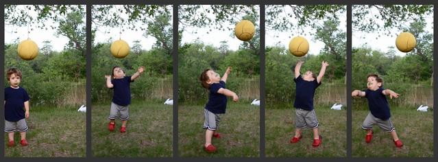 adam ball