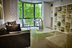 Modern Apartment at 1000 N. Lasalle