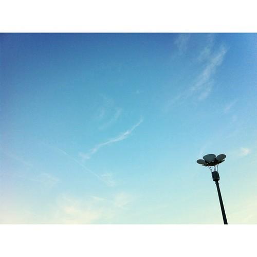 空に咲く。 #flower #iphonography #instagram