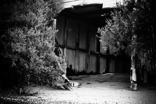 desolate shed by Matt Hovey (on hiatus. back soon!)