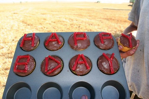 Andreas birthday cupcakes
