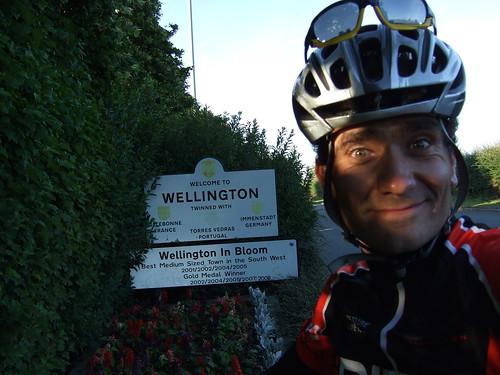 Wellington at sunset