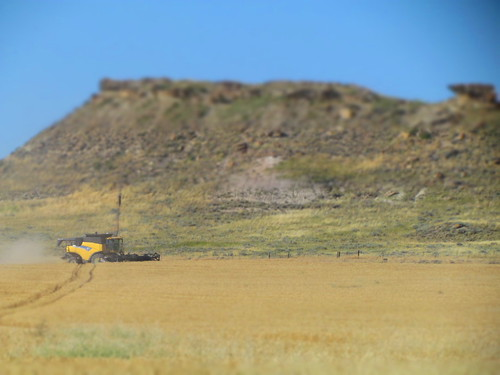 Combine near the butte.