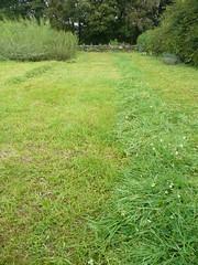 garden windrows