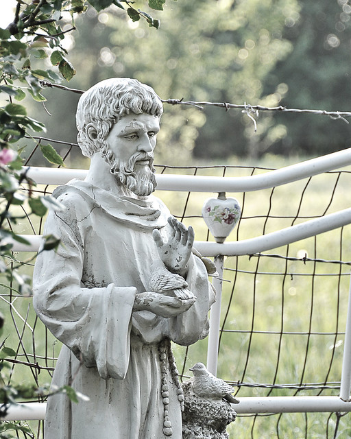 St. Francis in the Garden