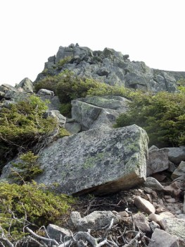 Looking up at Katahdin's Cathedral Trail buttresses.