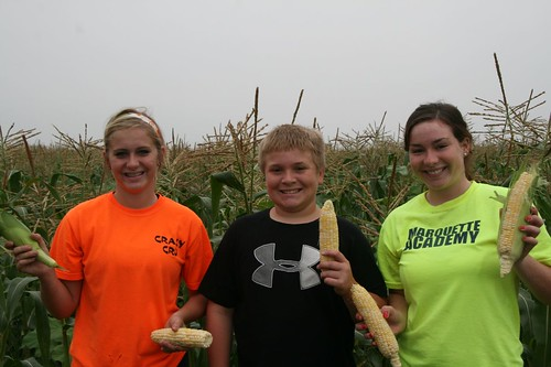 sweet corn pickers