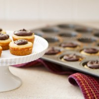 Peanut Butter Chocolate Cheesecake Bites