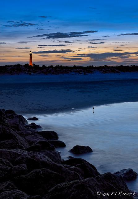 Ponce Inlet light, sunset, bird (re-do)