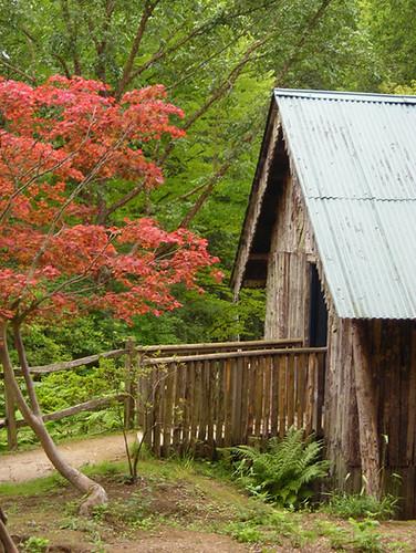 The boathouse 04