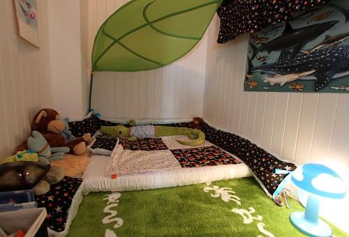 Tavi's new bed
