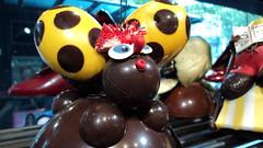 Chocolate Bug
