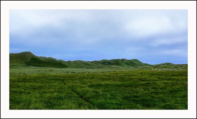 #204/365 Hobbit Land