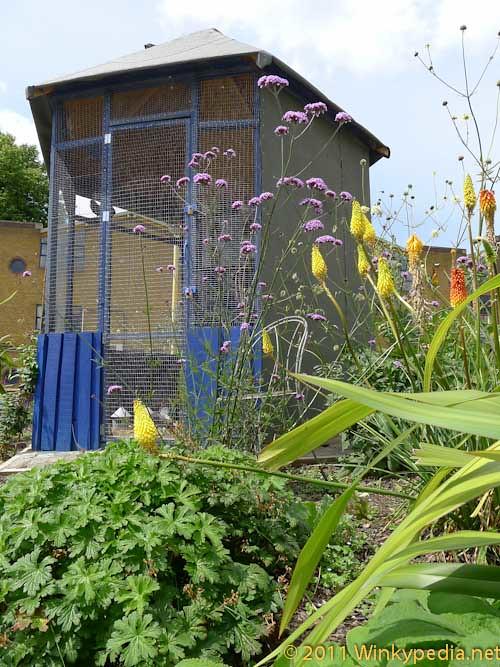 Pigeon aviary