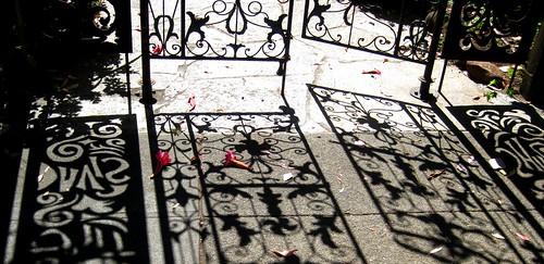 shadow by dyannaanfang