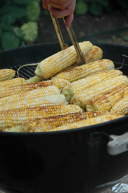 grilled-corn