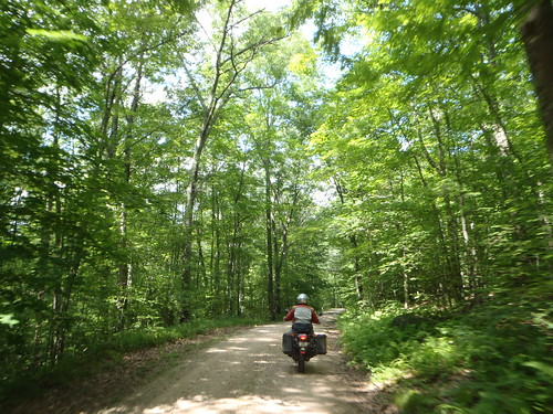 Beautiful afternoon of riding in the Natchaug State Forest, CT