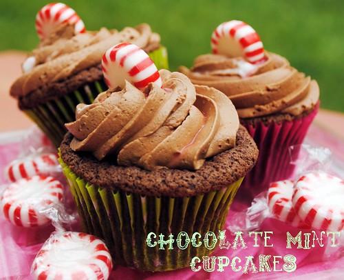 Chocolate Mint Cupcakes