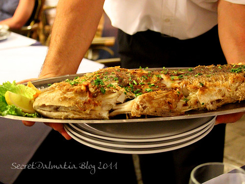 Grilled dentex - seafood rarely gets better than this!