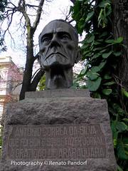 A.C. Silva (III)
