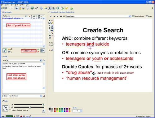 image of online library workshop in Elluminate
