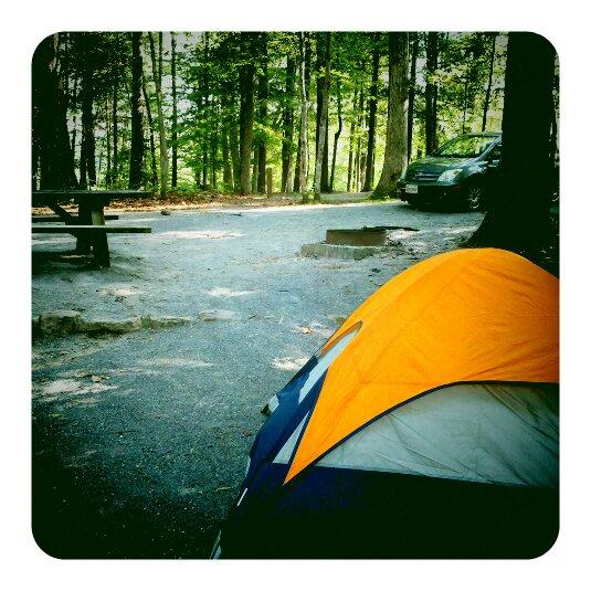 Camp Site 11 - Jacobs Creek