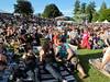 Summer Live Crowd