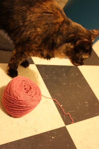 yarn 006