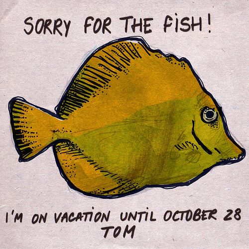 Sorry For The Fish!