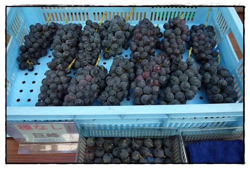 grapef